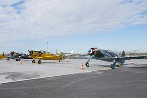 Meeting aérien des 120 ans de l'Aéro-Club de France