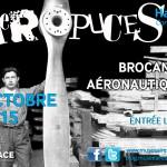 Affiche Aéropuces 2015