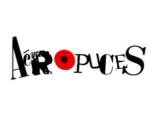 Aéropuces 2016